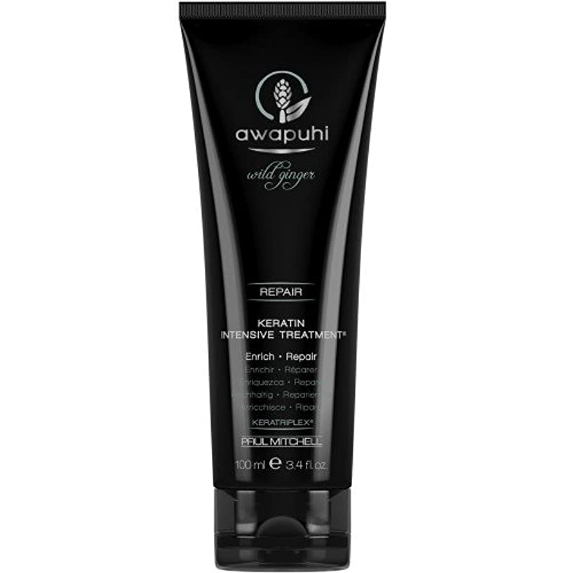 エゴマニア群衆渇きポール ミッチェル Awapuhi Wild Ginger Keratin Intensive Treatment (For Dry and Damaged Hair) 100ml/3.4oz並行輸入品