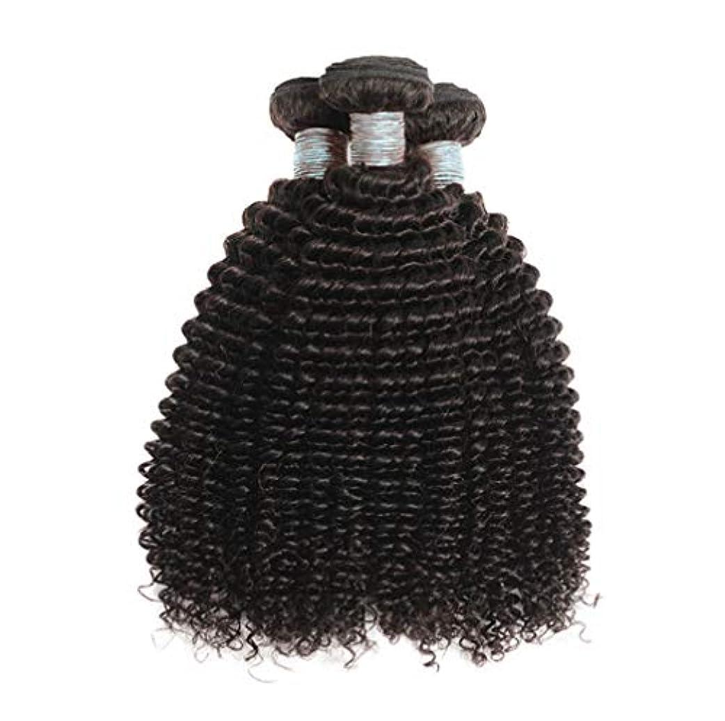 アサート悪性のサミュエル美しい8Aブラジルの髪の束ブラジルの巻き毛の束未処理のブラジルの人間の髪の束変態の巻き毛3束