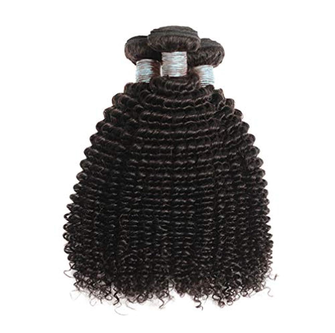 美しい8Aブラジルの髪の束ブラジルの巻き毛の束未処理のブラジルの人間の髪の束変態の巻き毛3束