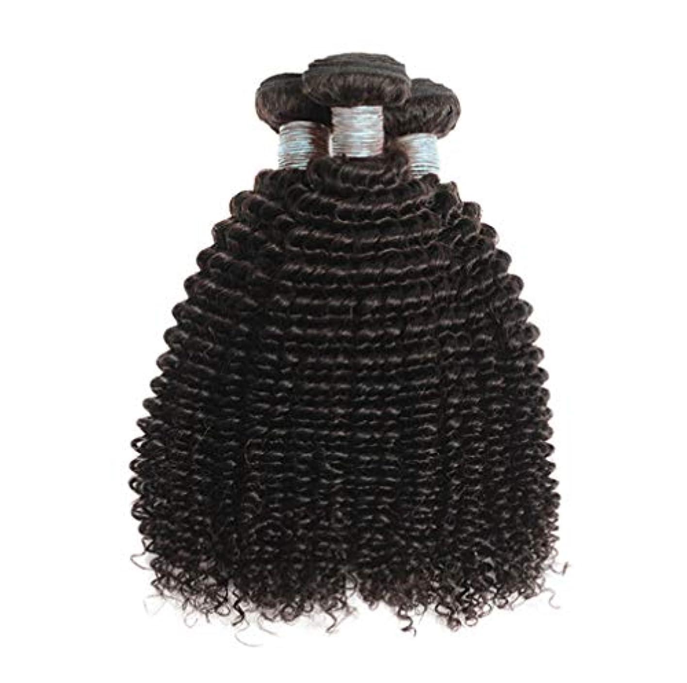 日曜日ラダささいな美しい8Aブラジルの髪の束ブラジルの巻き毛の束未処理のブラジルの人間の髪の束変態の巻き毛3束