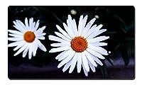 二つの小さな白い花(B) - 大型マウスパッド テーブルマット(350x600x3mm)