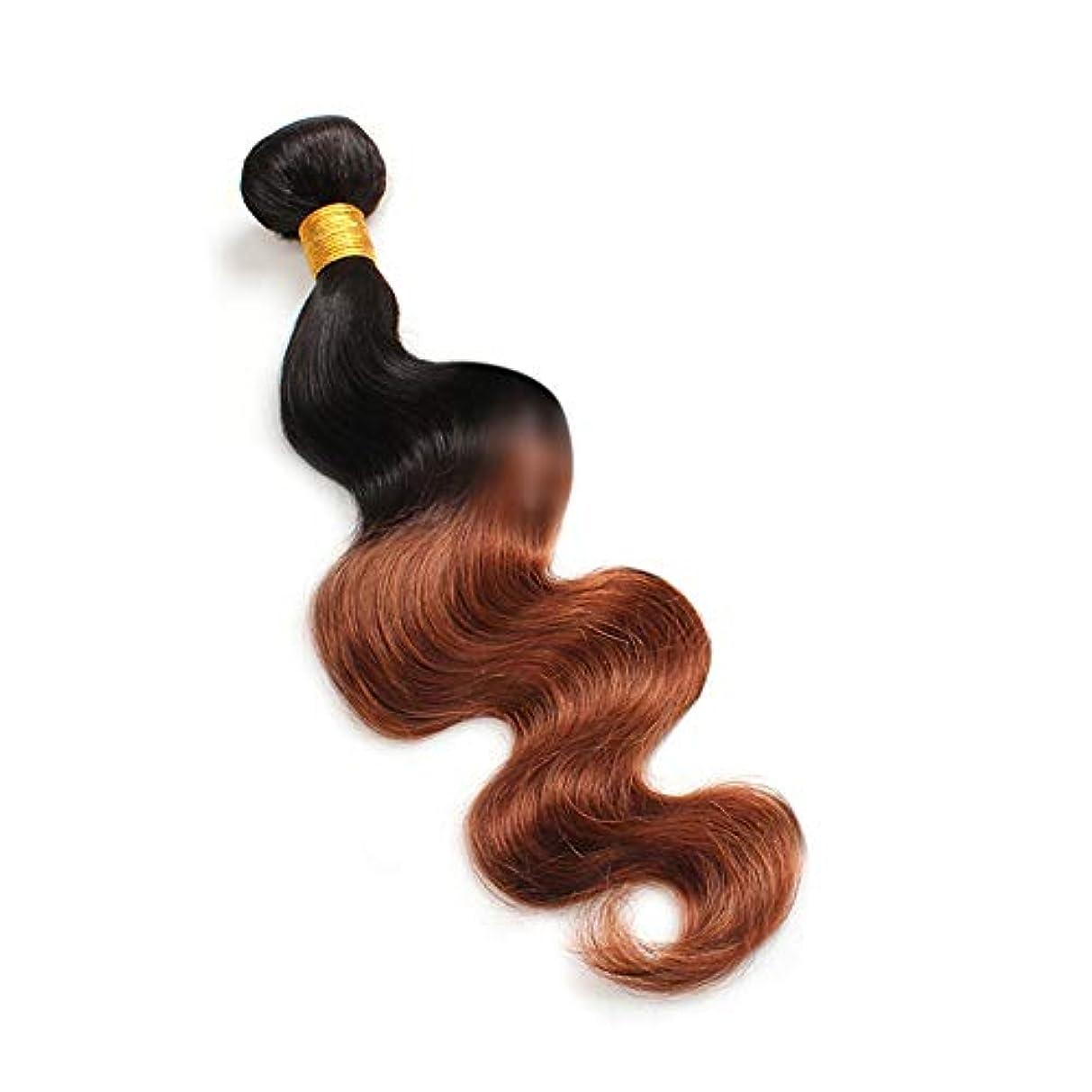 下線まだら柱HOHYLLYA 実体波人間の髪の毛1バンドルナチュラルヘアエクステンション横糸 - 1B / 30#黒と茶色のツートンカラー(100g / 1バンドル)合成髪レースかつらロールプレイングかつら長くて短い女性自然 (色...