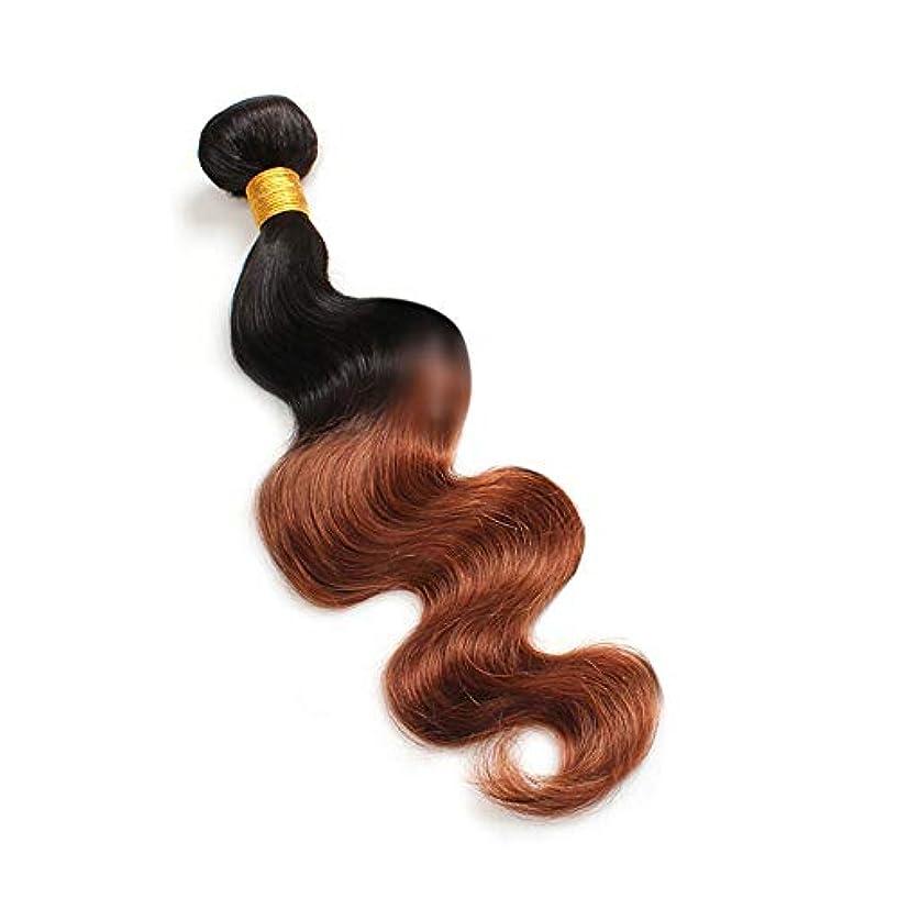 染料上げるスクリューHOHYLLYA 実体波人間の髪の毛1バンドルナチュラルヘアエクステンション横糸 - 1B / 30#黒と茶色のツートンカラー(100g / 1バンドル)合成髪レースかつらロールプレイングかつら長くて短い女性自然 (色...