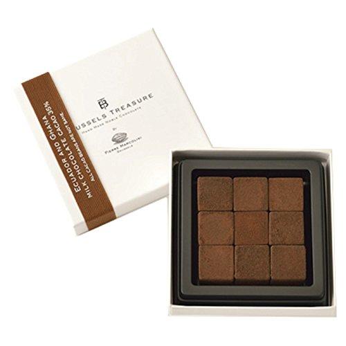 ピエールマルコリーニ 生チョコレートエクアドル アンド ガーナ ミルクチョコレート9個(ギフト梱包・ギフト袋・メッセージカードつき)