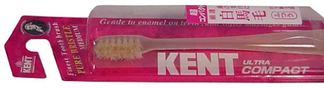 不明瞭研磨剤傑出したKENT 白馬毛歯ブラシ 超コンパクトヘッド ふつう KNT-0232 ×6個セット