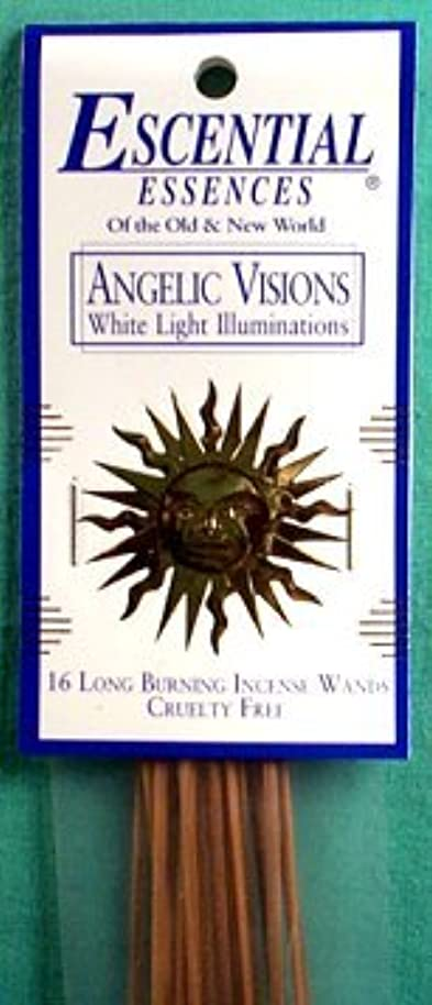 化学者気がついてハグAngelic Visions Escential Essences Incense Sticks