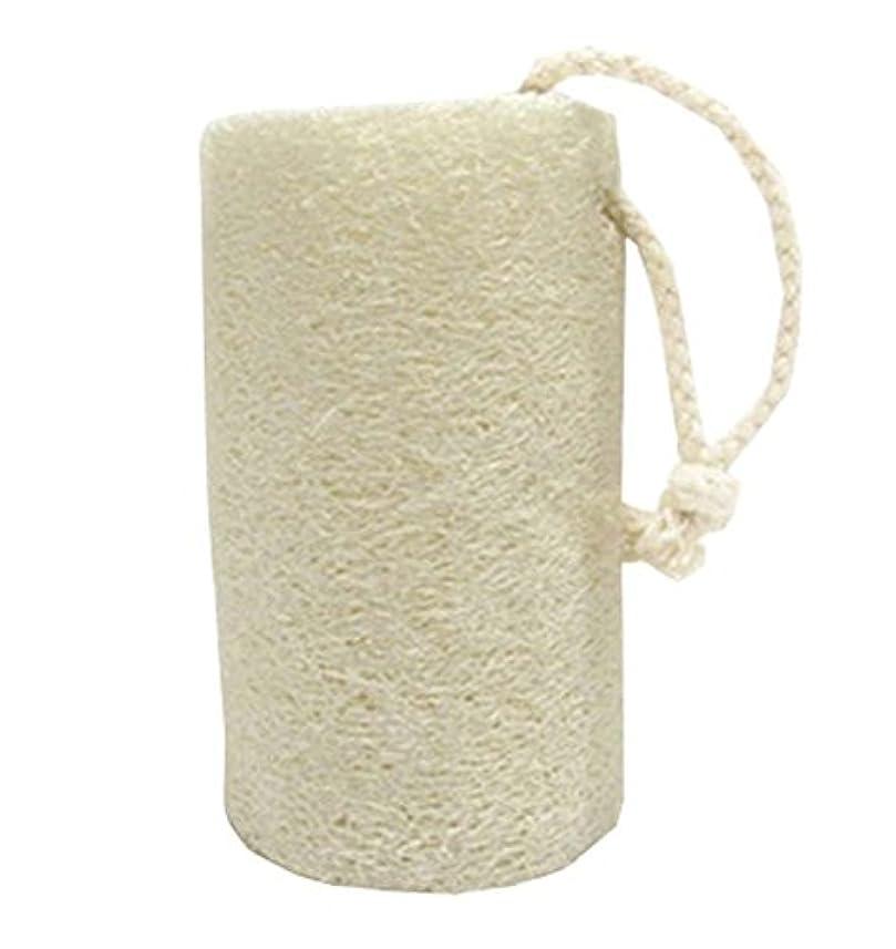 石膏信じられないでスキンボディブラシ - スキンケアの健康と美容を改善する - Natural Loofah、C