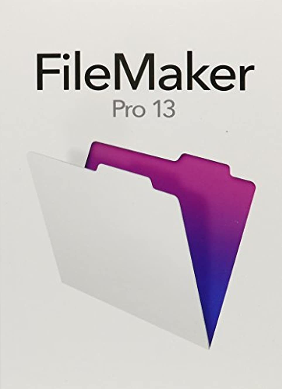 平凡対立刺繍Filemaker Pro 13(並行輸入品)