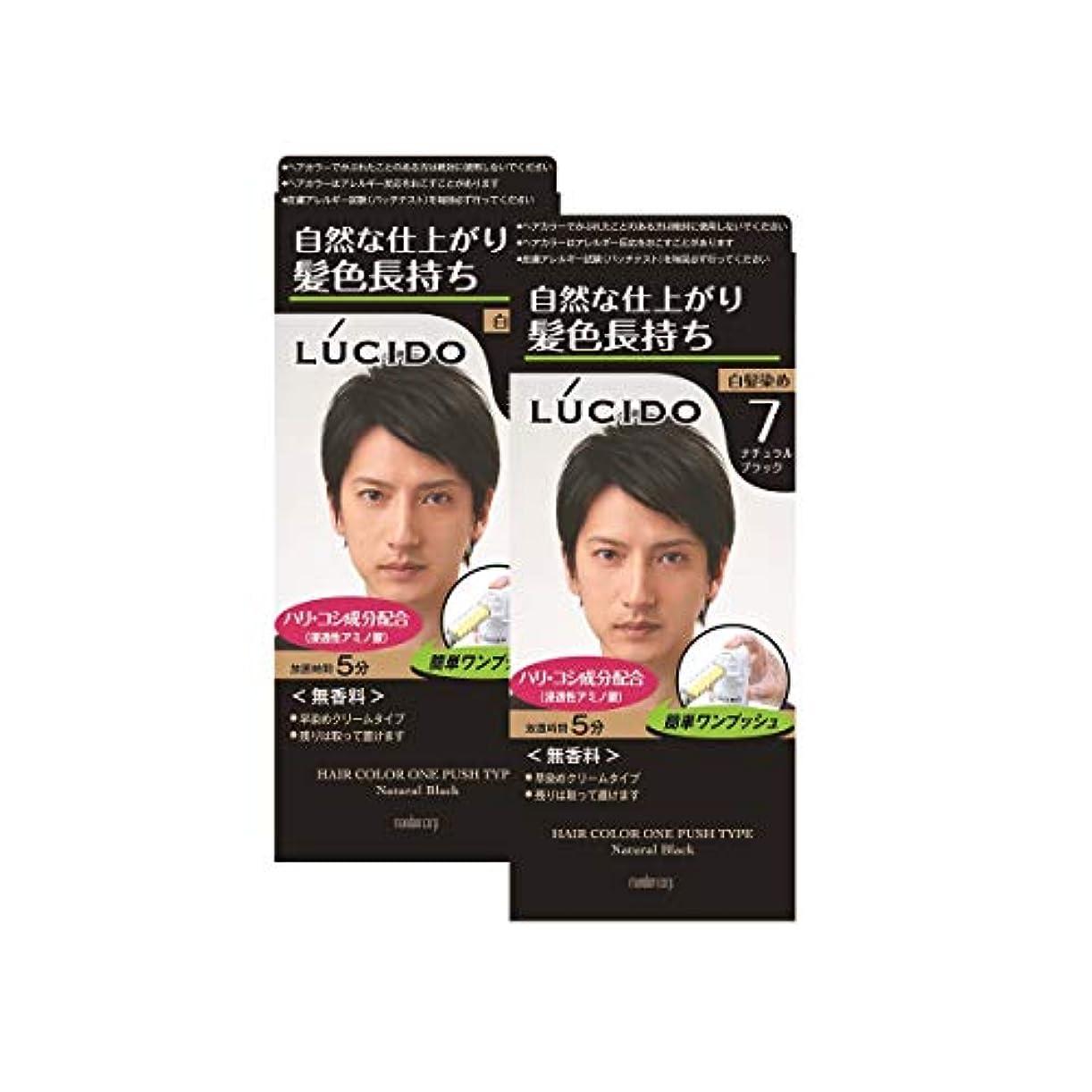 有効敬礼卑しい【まとめ買い】ルシード(LUCIDO)ワンプッシュケアカラー ナチュラルブラック 2個パック メンズ用 無香料 白髪染め ショートヘア約4回分