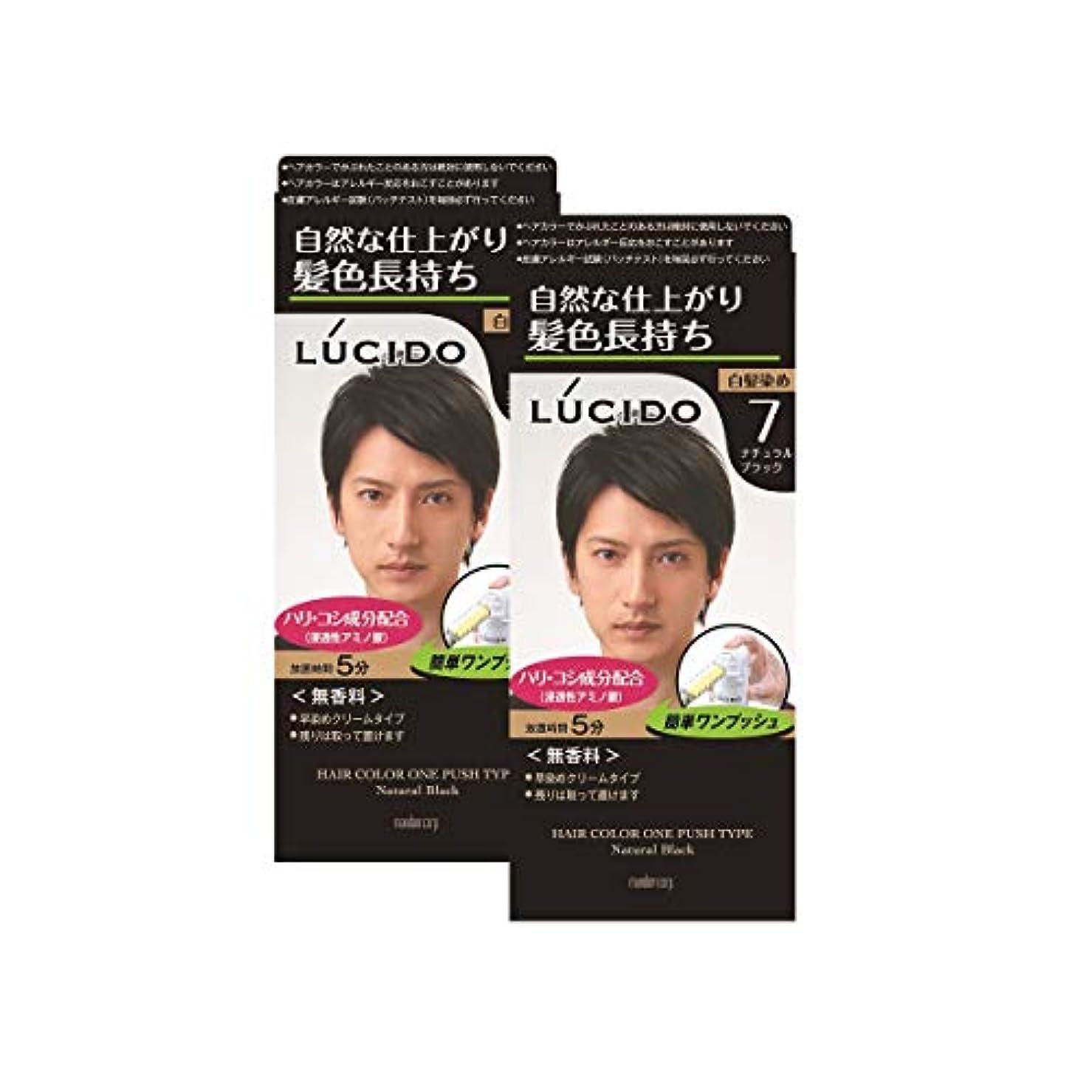 疑問に思うそばにしてはいけません【まとめ買い】ルシード(LUCIDO)ワンプッシュケアカラー ナチュラルブラック 2個パック メンズ用 無香料 白髪染め ショートヘア約4回分