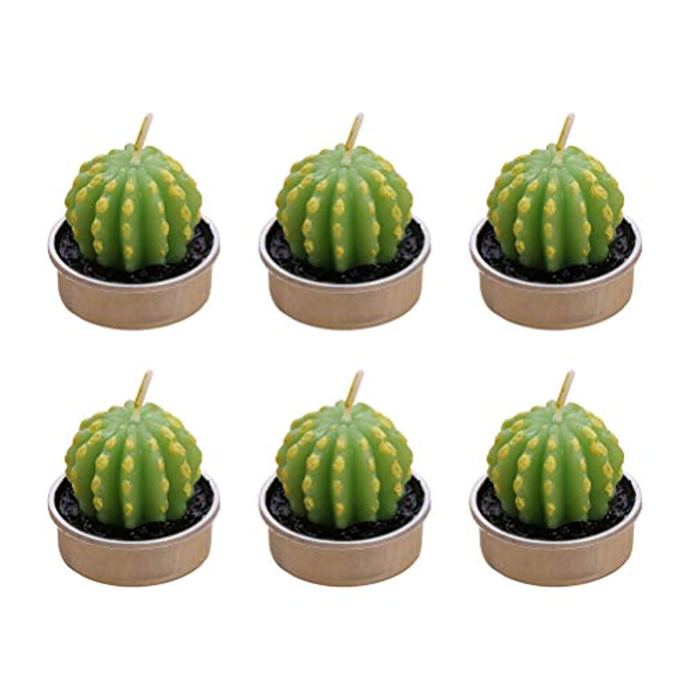 上サラダ魅惑するBESTONZON 12ピースサボテンキャンドルティーライト用ガーデンホームパーティーウェディングデコレーションギフト