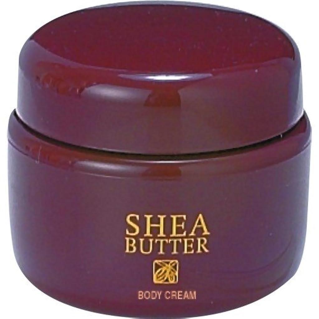 バッグ紫の扱いやすい生活の木 シアバター ボディクリーム 140g