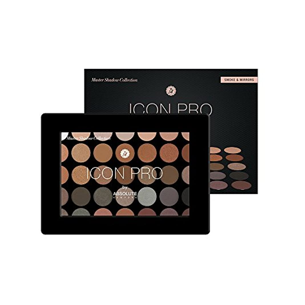 フィードオン鎖検証ABSOLUTE Icon Pro Palette - Smoke & Mirrors (並行輸入品)
