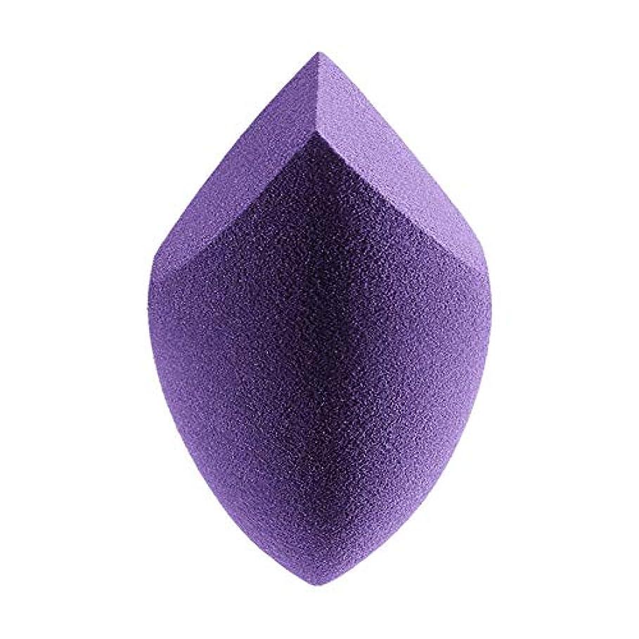 仮説アプローチスクラップBrill(ブリーオ) メイクアップスポンジ ふわふわ 化粧品パフ ファンデーション メイクアップ 吸水パウダーパフ 初心者 美容院 化粧道具