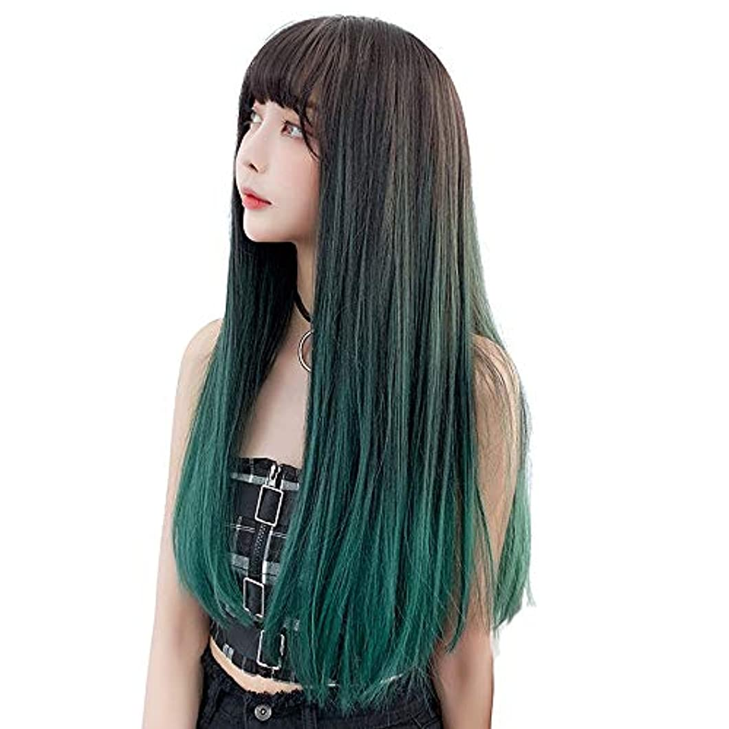 遠い両方群がるSRY-Wigファッション 女性の耐熱繊維髪合成レースフロントかつら130%密度長い絹のようなファッションストレートウィッグ (Color : 02, Size : フリー)
