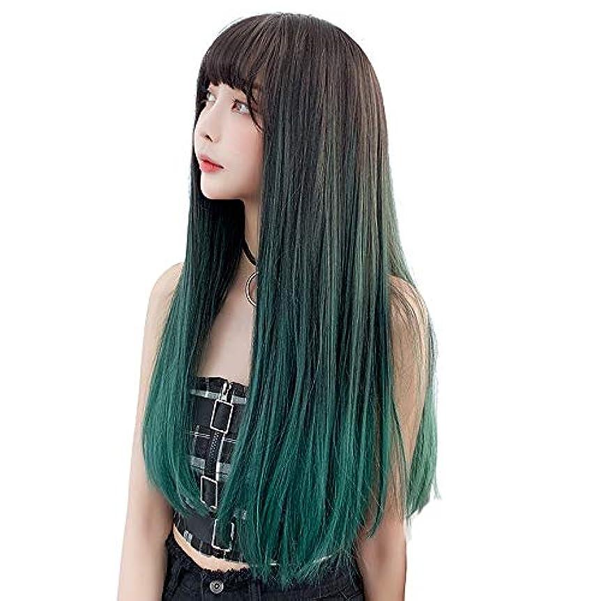 スラダムシガレット宿題SRY-Wigファッション 女性の耐熱繊維髪合成レースフロントかつら130%密度長い絹のようなファッションストレートウィッグ (Color : 02, Size : フリー)