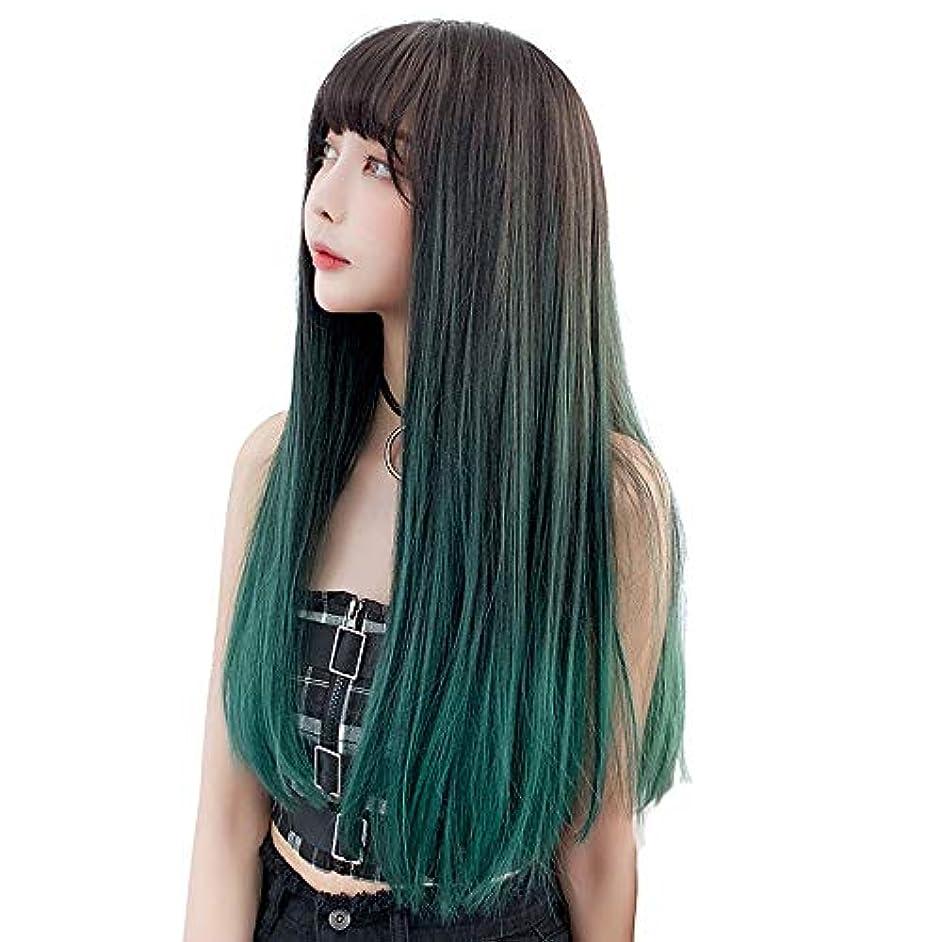 消えるチケットなのでSRY-Wigファッション 女性の耐熱繊維髪合成レースフロントかつら130%密度長い絹のようなファッションストレートウィッグ (Color : 02, Size : フリー)