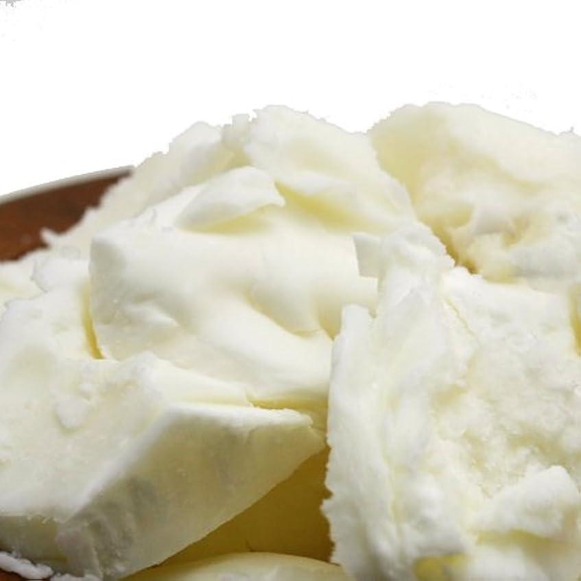 パースラフトカプセル精製シアバター 500g シア脂 【手作り石鹸/手作りコスメ/手作り化粧品】
