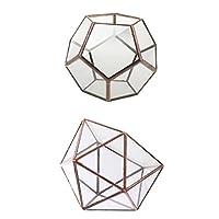 Kesoto 2個 幾何学テラリウム  ガラス 幾何学 テラリウムボックス 卓上 多肉植物プランター