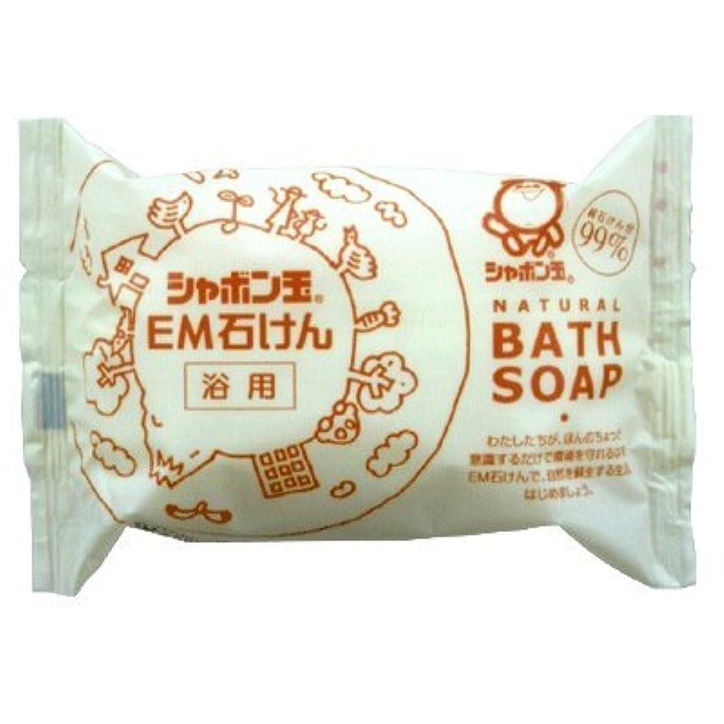 エコー奇妙な湿ったシャボン玉EM化粧石けん(浴用) 100g 5個セット