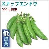 【スナップエンドウ 500g】熊本県産低農薬栽培。【送料込】