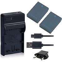 NinoLite 4点セット DMW-BCC12 互換 バッテリー 2個 +USB型 充電器 +海外用交換プラグ
