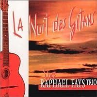 Nuit Des Gitans by Raphael Fays