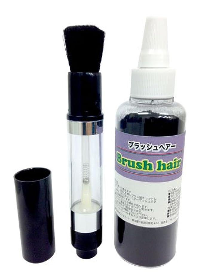 忍耐支払う定義するブラッシュヘアー スターターキット(ブラシ&パウダー黒)
