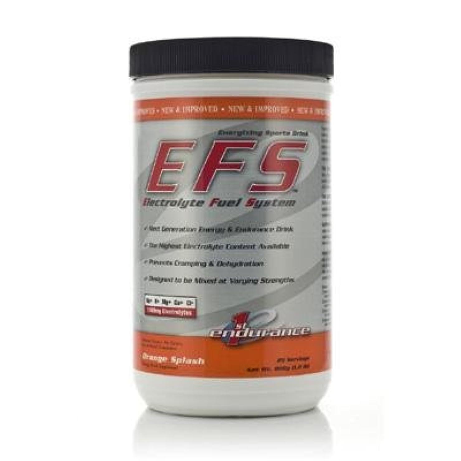 1ST ENDURANCE EFS エレクトライト フューエルシステム オレンジスプラッシュ 816g
