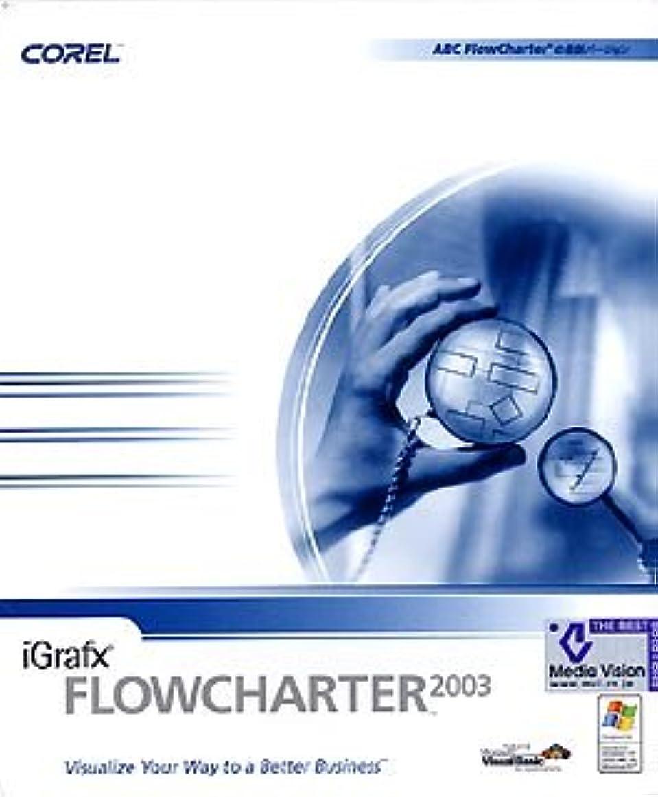 iGrafx FlowCharter 2003 日本語版