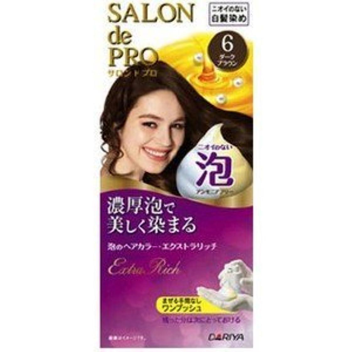 【ダリヤ】サロンドプロ 泡のヘアカラー?エクストラリッチ 6 ダークブラウン(医薬部外品)