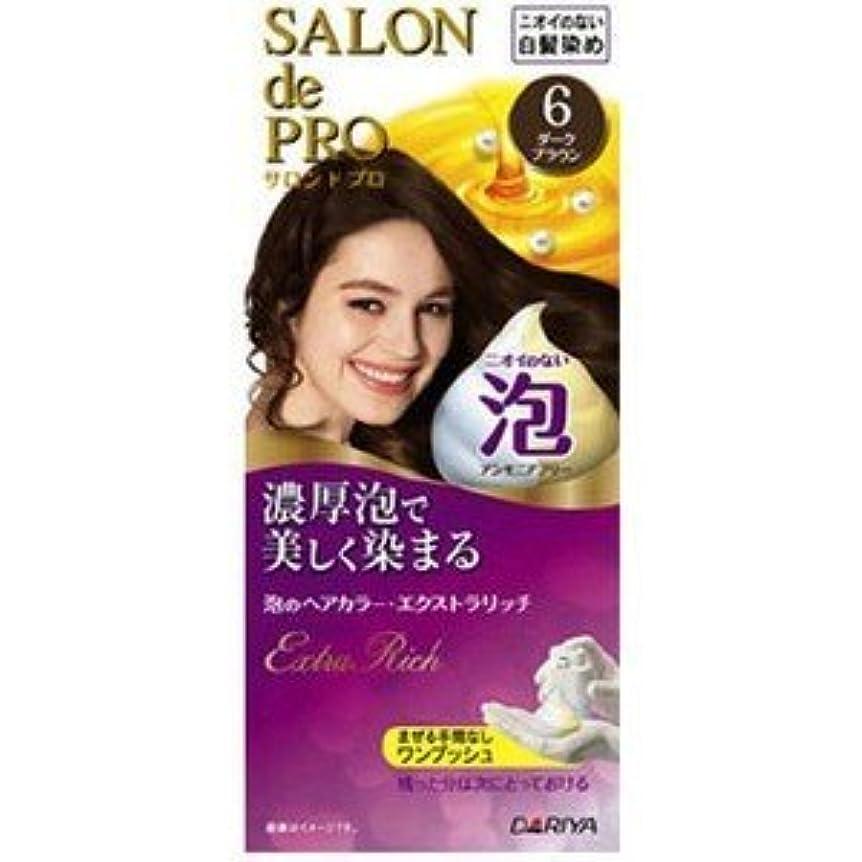 再生可能ピンク型【ダリヤ】サロンドプロ 泡のヘアカラー?エクストラリッチ 6 ダークブラウン(医薬部外品)