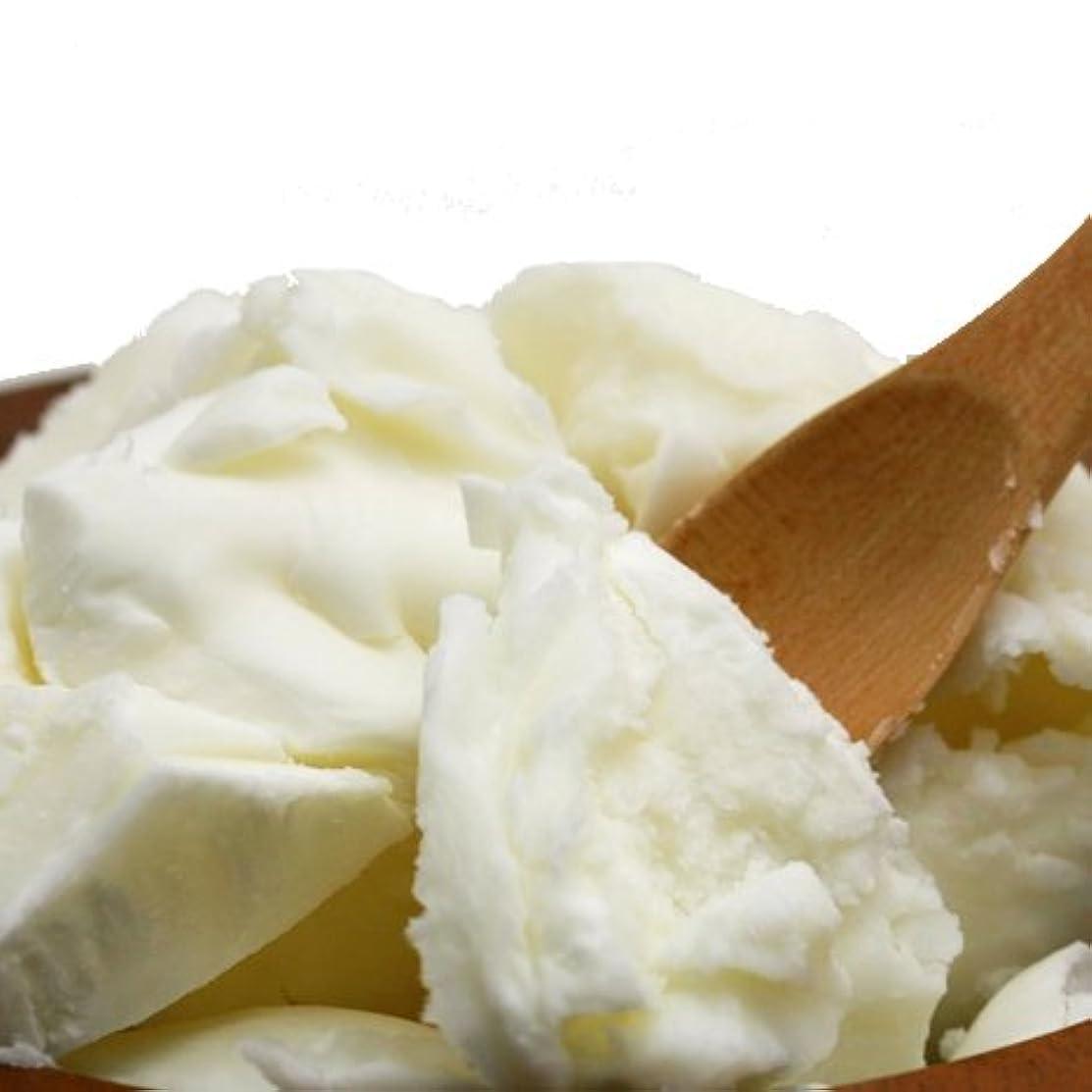 切り離す乳白色効能あるオーガニック 精製シアバター 100g シア脂 【手作り石鹸/手作りコスメ/手作り化粧品】