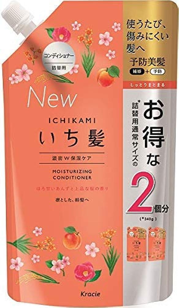ブラシ契約野菜いち髪 濃密W保湿ケアコンディショナー詰替用2回分 × 5個セット