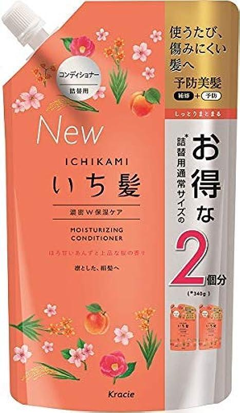 退屈な葡萄模倣いち髪 濃密W保湿ケアコンディショナー詰替用2回分 × 5個セット