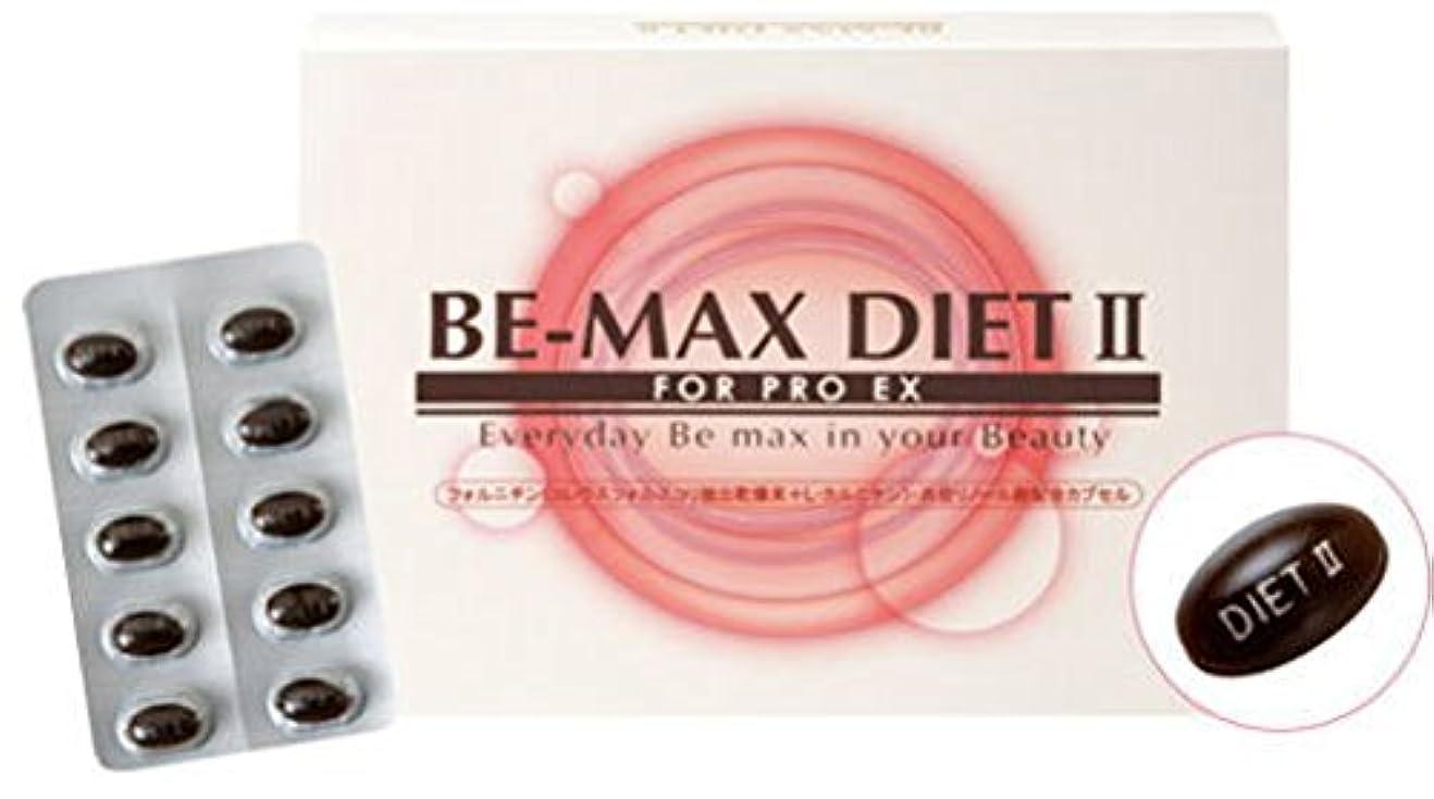 海里実験をする休憩するBE-MAX DIET 2【ビーマックス ダイエット 2】