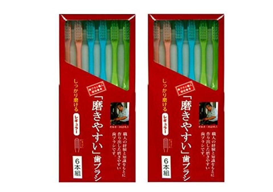 宗教的な波紋顔料磨きやすい歯ブラシ 6本組 レギュラータイプ×2個セット