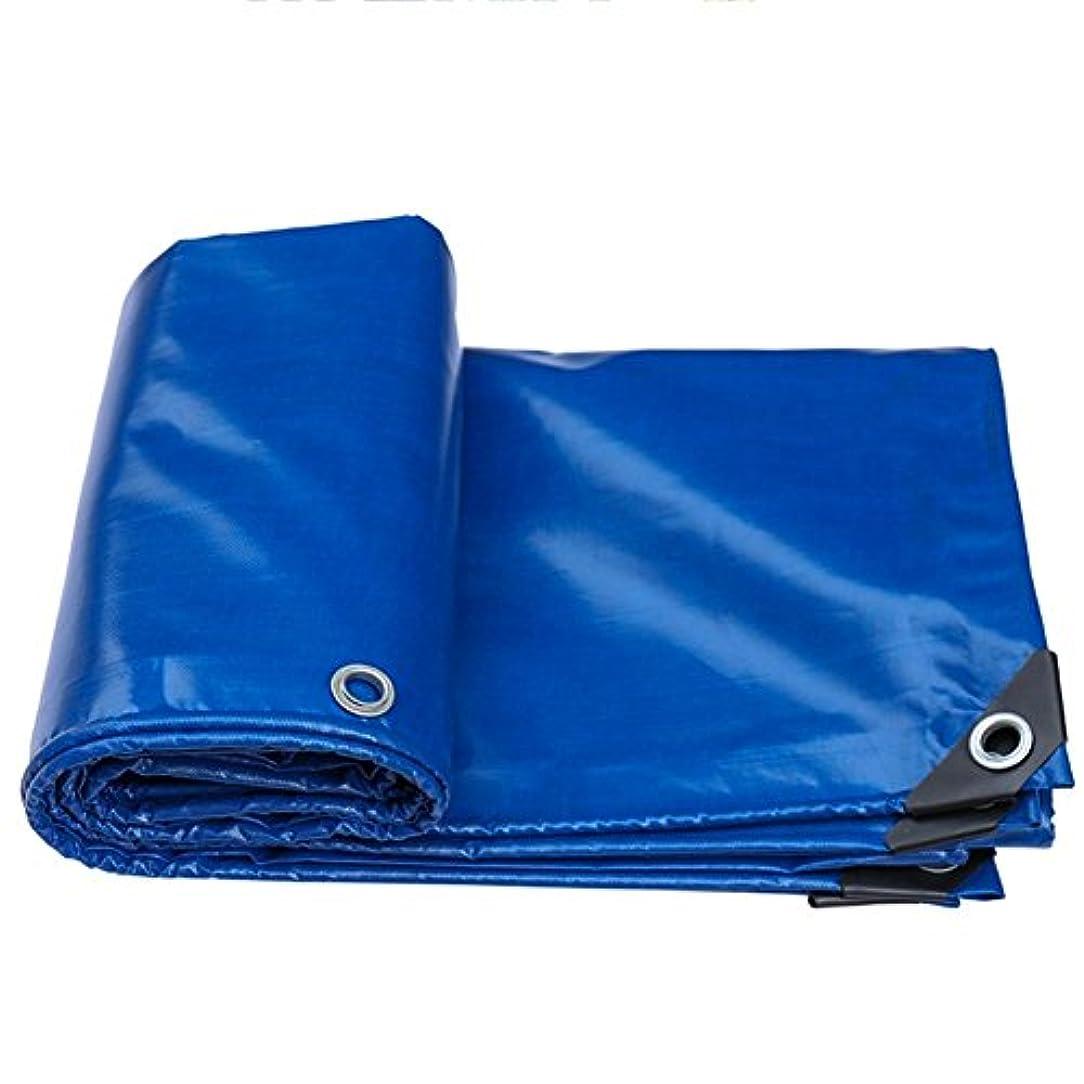 フリース実業家落ち着いてNwn レインターポリンテントシェードクロスレイン防水防水防塵ブループラスチッククロスタープ550 G/M²、ブルー (サイズ さいず : 3x6m)