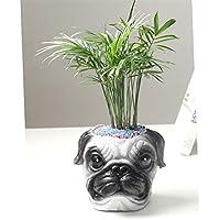 WBFN 屋内屋外のバルコニー装飾ギフトガーデンプランター、家庭やオフィスの装飾のためのパーフェクトプラントポットプランター、レジンかわいい犬の創造動物フラワーポット工芸品の装飾品、 (Color : A, Size : 15.7*14*13 CM)