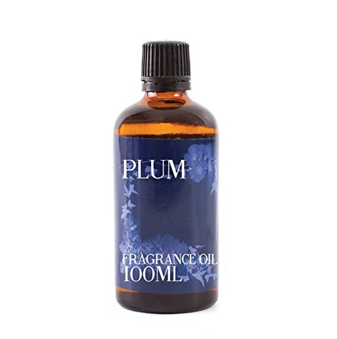形状鮮やかな絡まるMystic Moments | Plum Fragrance Oil - 100ml