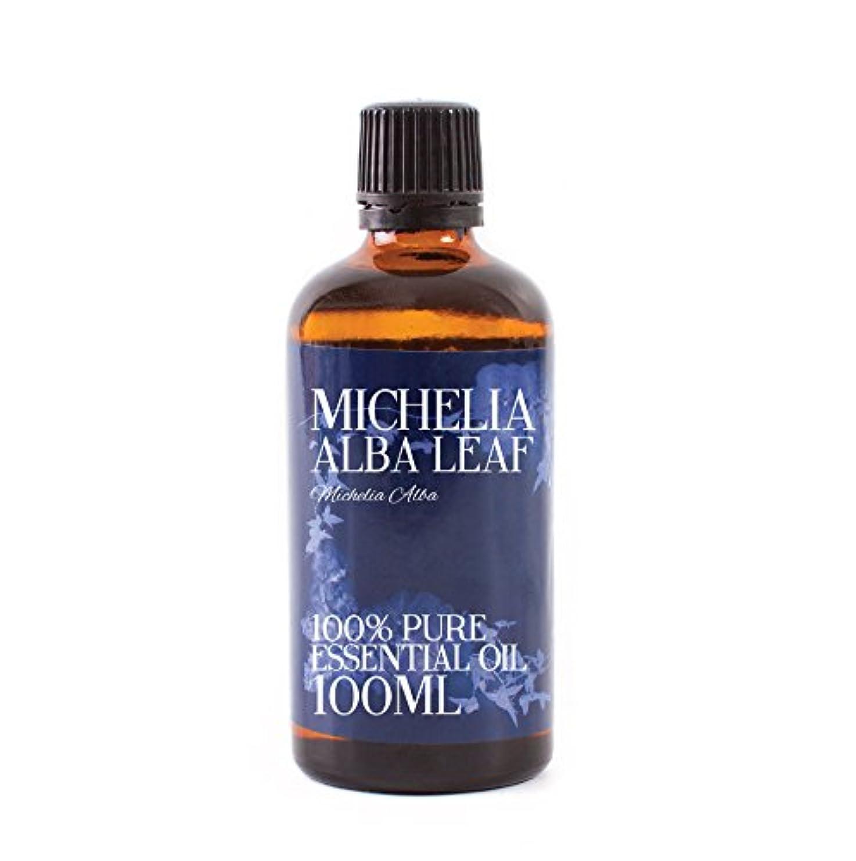 添加剤回想スポーツをするMystic Moments | Michelia Alba Leaf Essential Oil - 100ml - 100% Pure