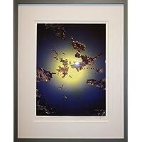 絵画 岡本博 リトグラフ 宇宙 直筆サインあり 額装済 おしゃれインテリア 惑星