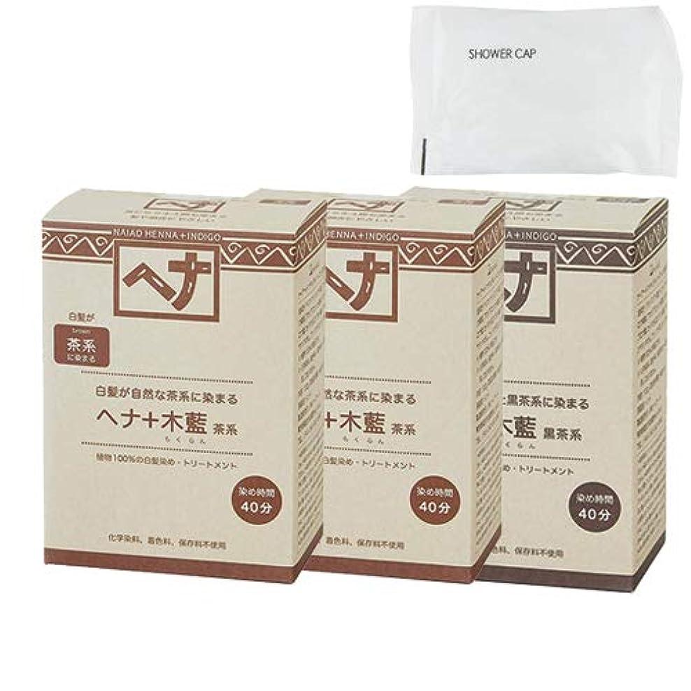 ディンカルビル酸化物囲むNaiad(ナイアード) ヘナ+木藍 茶系(100g) × 2個 + ヘナ+木藍 黒茶系(100g) + シャワーキャップセット