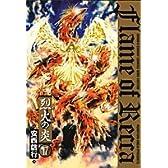 烈火の炎 17 (少年サンデーコミックスワイド版)