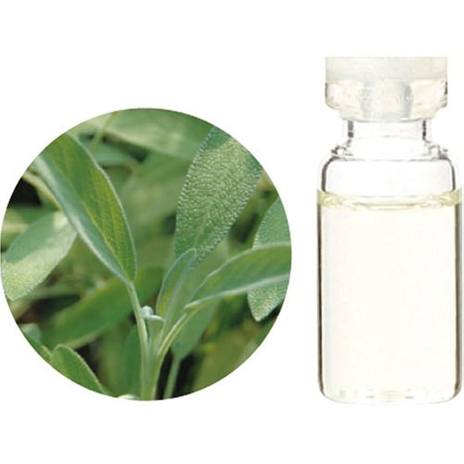 透明に原子贅沢Herbal Life セージ 10ml