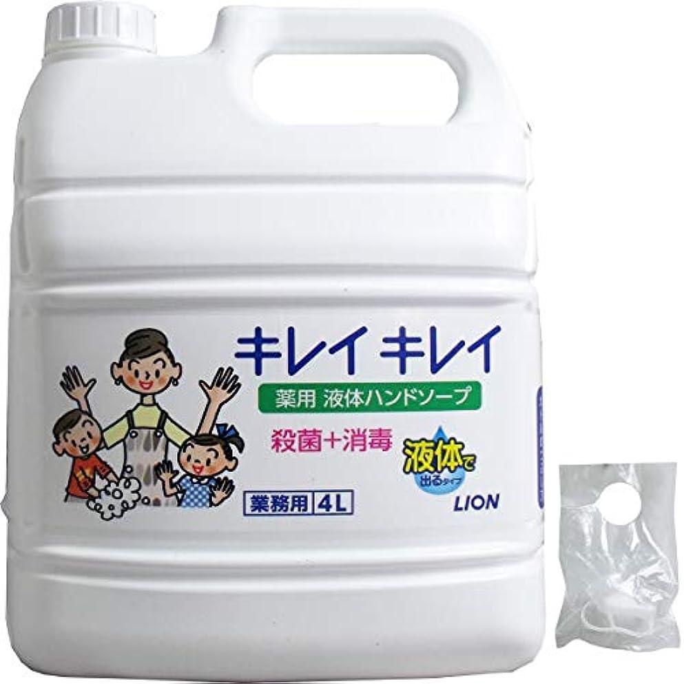 前兆ペイントスローガン業務用 キレイキレイ 薬用ハンドソープ 4L(単品1個)