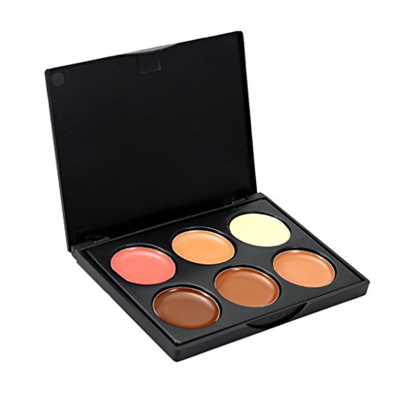ナプキン真面目な工業用コンシーラー 6色パレット 化粧用 コンター フェイス 全3種選択可能 - #1