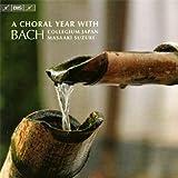 クリスマスから宗教改革記念日まで - バッハのカンタータで教会暦をたどる (A Choral Year with Bach / Masaaki Suzuki , BCJ) (日本語解説付)