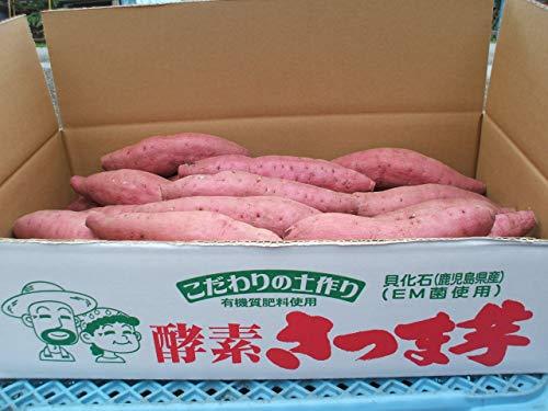 鹿児島県産 西山さんちの酵素紅はるか 2Lサイズ さつまいも5kg