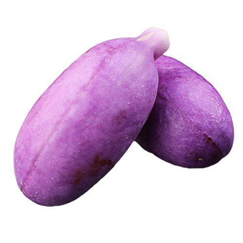 あけび アケビ ゼリー食感がくせになる!鮮やかな紫色が美しい山形産のあけび約1kg 5~10個(gn)※9月上旬出荷予定